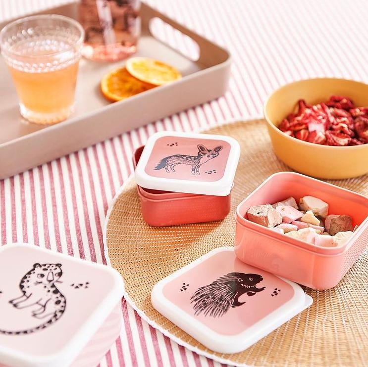 Afbeelding Lunchbox ijslolly's – Desert Rose