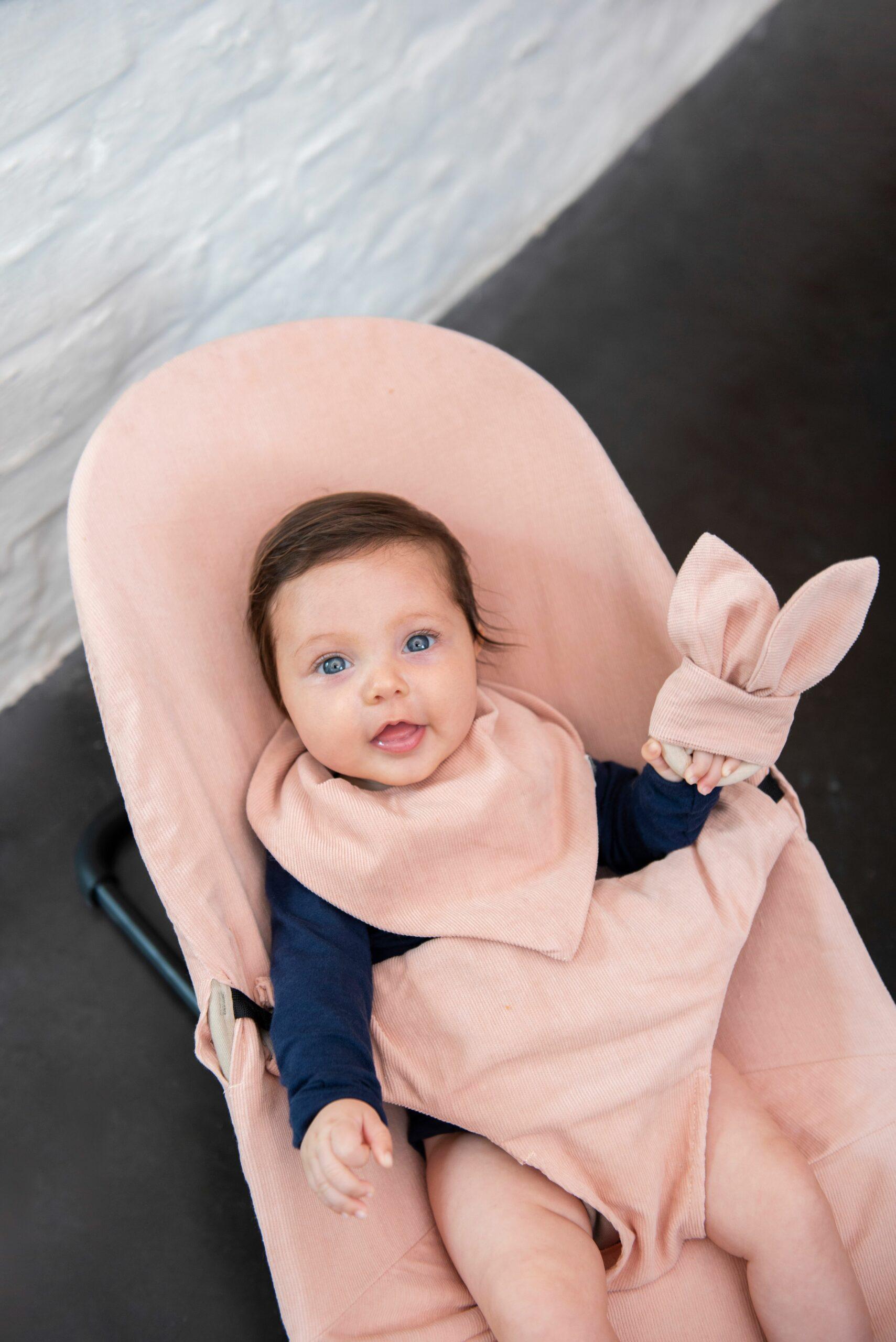 Afbeelding Trixie Beschermhoes wipstoeltje | Babybjörn Ribble Rose